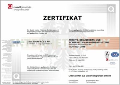 ISO 45001: Sicherheitsmanagementsystem (405,5 KB)